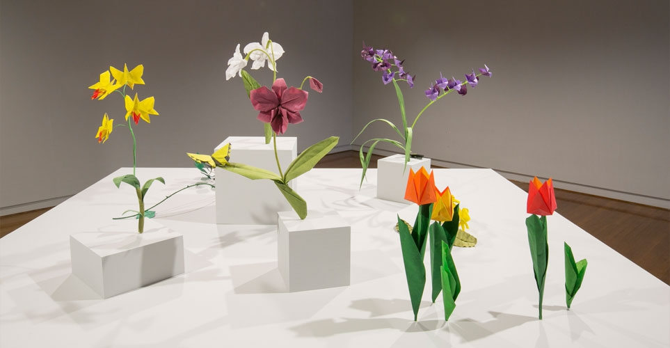 Exhib_slideshow_exhibition_lessmore_flowers