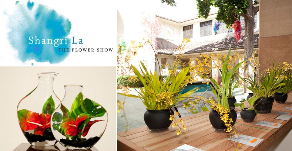 Exhib_slideshow_exhibition_sl_flowershow