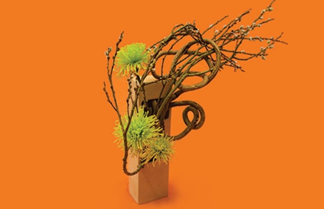 Featured_exhib_ikebana_bertha_153