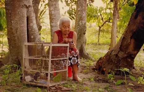 Featured_exhib_film_alist_lookofsilence