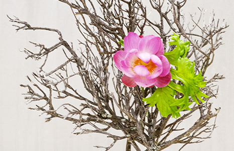 Featured_exhib_ikebana_01