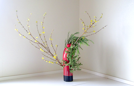 Featured_exhib_carol_ikebana_01
