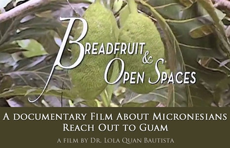 Featured_exhib_film_breadfruitopenspaces