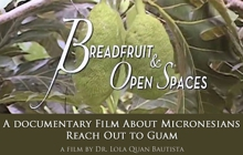Past_exhib_film_breadfruitopenspaces