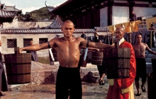 Past_exhib_36th_chamber_shaolin