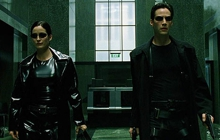 Past_exhib_film_matrix