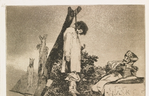 Partial_wide_goya_4