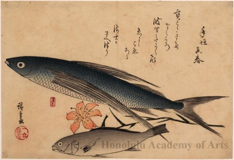 Flying Fish, Japanese Croaker & Lily
